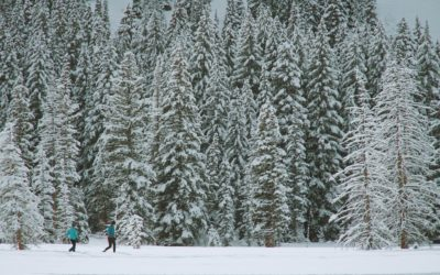 Snowshoeing and XC Skiing in Central Oregon